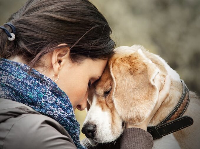 Loyalty-Between-Canines-and-Humans